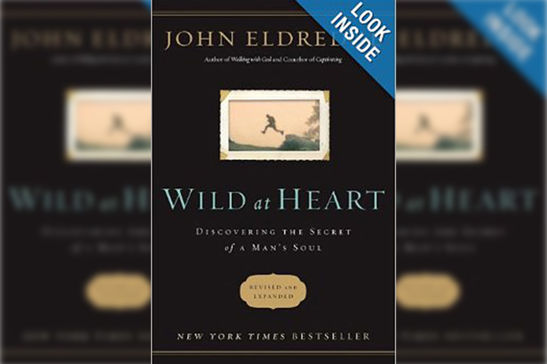 The Wild at Heart by John Elddred