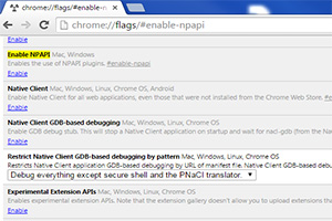 NPAPI Support by Chrome
