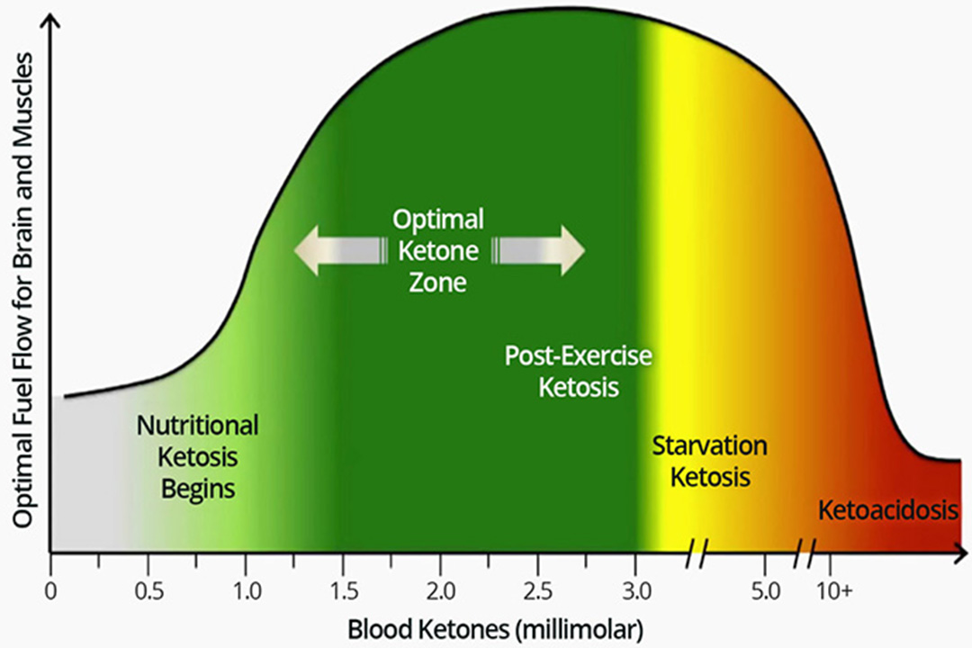 How To Naturally Increase Your Ketones